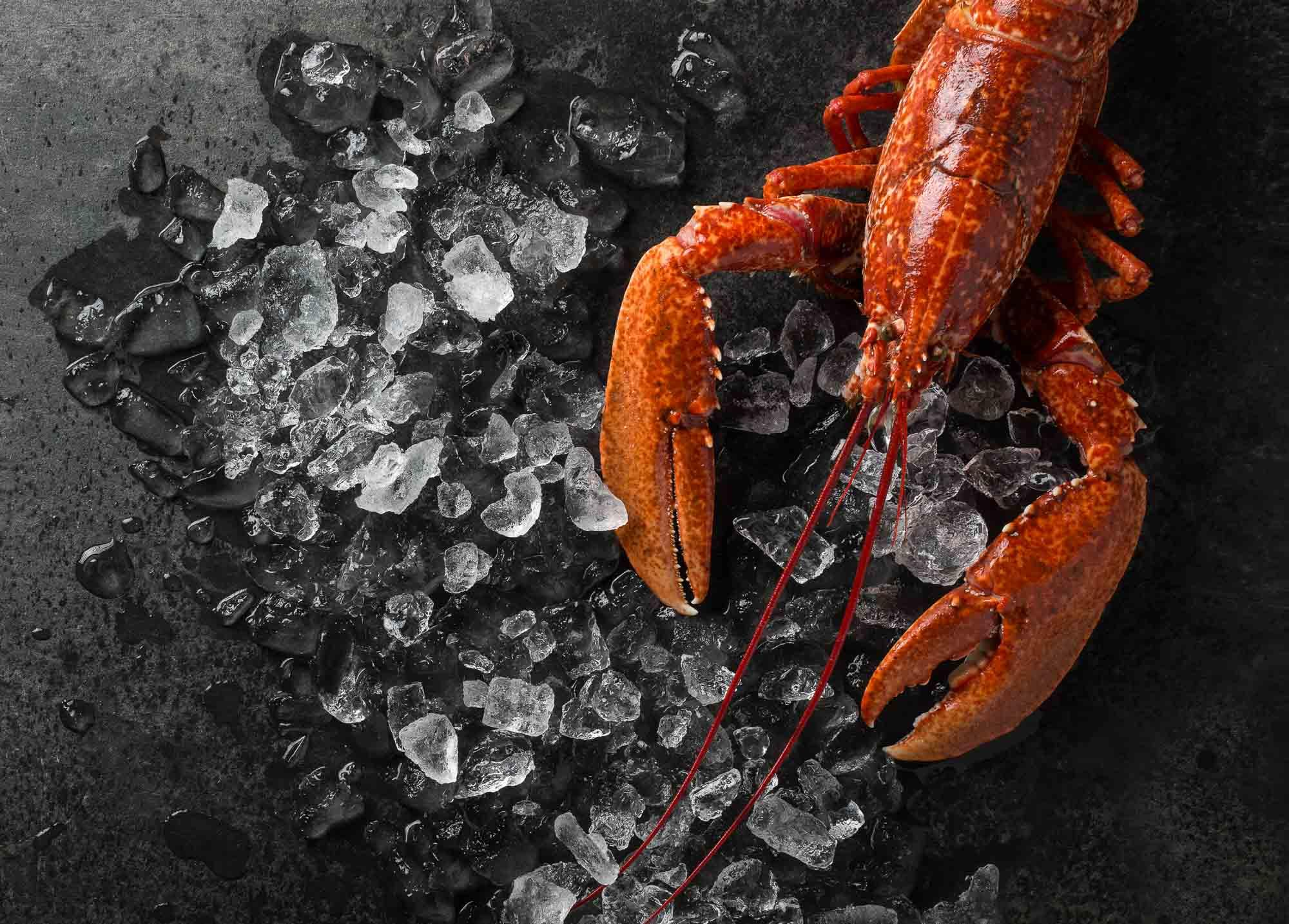 Lobster and Ice